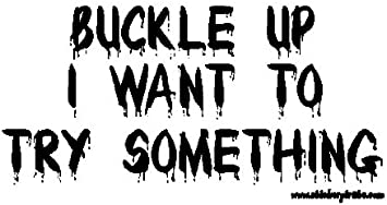 BUCKLE UP I WANT TO TRY SOMETHING FUNNY DECAL STICKER ART CAR WALL DECOR