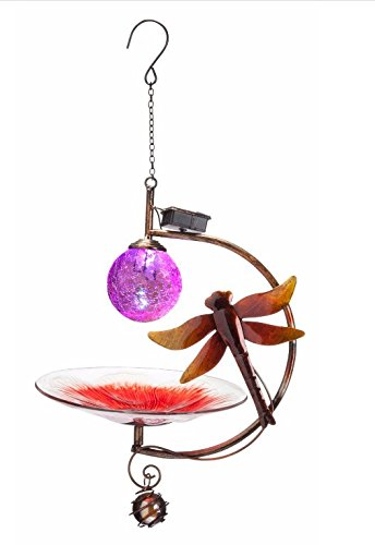 Sunset Vista Designs Dragonfly Solar Globe Bird Feeder by Sunset Vista Designs