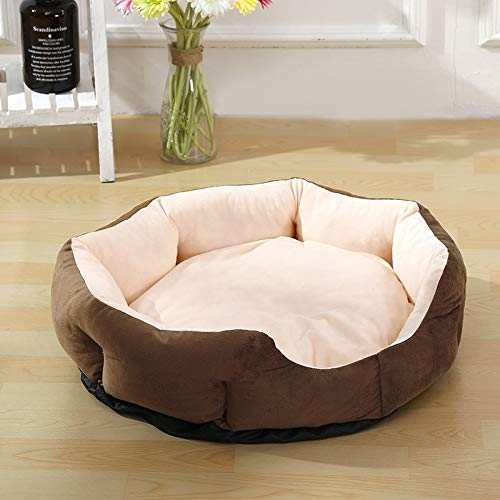 Prime Amazon Com D Modernlife Dog Bed Pet Dog Round Shape Squirreltailoven Fun Painted Chair Ideas Images Squirreltailovenorg