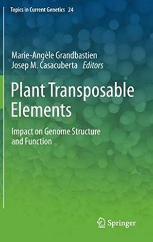 Plant Transposable Elements: Impact on Genome Structure and Function