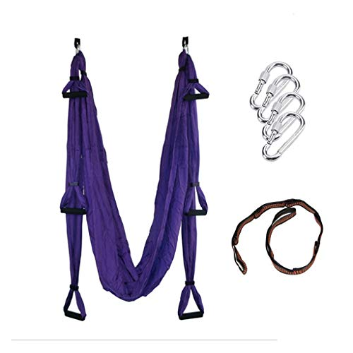 Karriw Aerial Anti-Gravity Yoga Hammock Swing Fitness Inversion Pilates Yoga Trapeze/Yoga Swing/Sling/Inversion Tool (Violet)