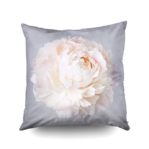 Capsceoll Art Pillow Case,Peony Pale Pink Color Isolated on a Gray Background 16x16 Inch Pillow Covers,Decoration Pillow Cases Zippered Covers Cushion for Sofa Couch