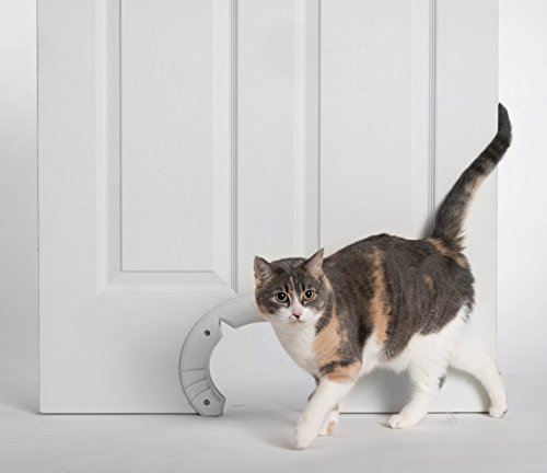 Built in interior pet cat door for medium and large cats hole pass built in interior pet cat door for medium and large cats hole pass fits indoor hollow core or solid inside doors kitty shaped hole interior cat door planetlyrics Images