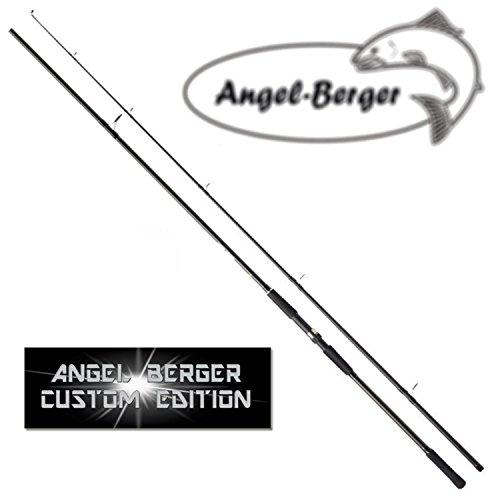 Angel Berger Karpfenrute Karpfenangel Steckrute