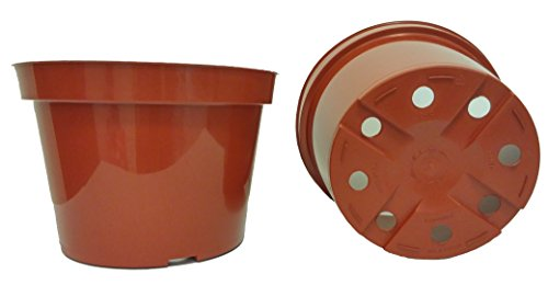 20 New 6 Inch Azalea Plastic Nursery Pots ~ Pots ARE 6 Inch Round At the Top and 4.25 Inch Deep, Color Terracotta by Azalea