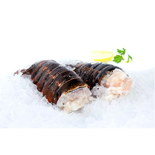 Two Canadian Nova Scotia 12-14 Oz Cold Water Lobster Tails