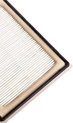 Green Label Filtro HEPA para Aspiradora Bosch y Siemens. Reemplaza a 263506, BBZ8SF1: Amazon.es: Hogar