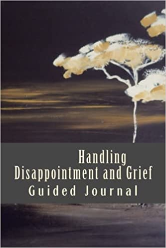 Amazon com: Handling Disappointment and Grief - Guided