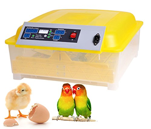 Kemanner Automatic 48 Digital Clear Egg Incubator Hatcher Egg Turning Temperature Control 80W US Plug (48eggs)