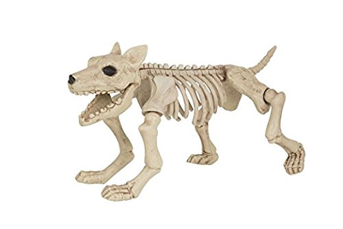 Skeleton Dog, Halloween Party Accessory Prop/Room (Halloween Dog Skeleton)