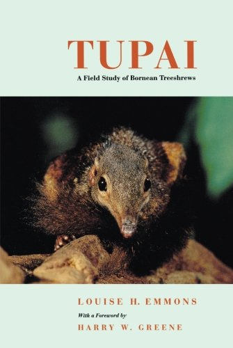 Tupai: A Field Study of Bornean Treeshrews (Organisms and Environments)