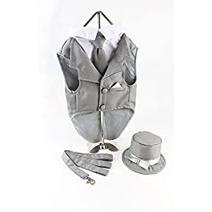 Midlee Dog Tuxedo Wedding Suit- Gray Top Hat & Leash by (Large)