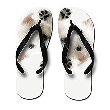Animal Designs Printing Unisex-Adult Flip Flops