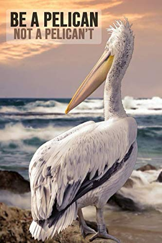 - Be a Pelican Not a Pelican't: Lovely Pelican Journal / Notebook / Diary, Unique Birds Gift For Kids And Adults (Lined, 6