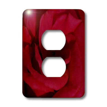 3dRose lsp_21636_6 Red Rose Oil Painting 2-Plug Outlet Cover