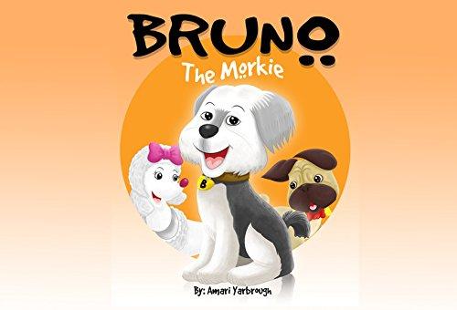 Bruno The Morkie