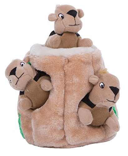 Hide a Squirrel Fun Hide and Seek Interactive Puzzle Plush Dog Toy by Outward Hound, 4 Piece, Jumbo