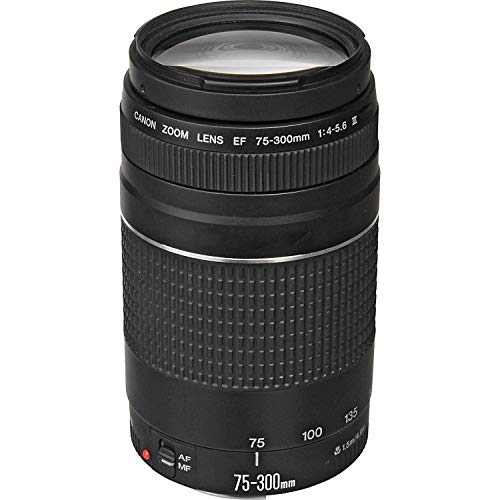 Canon EF 75-300mm f/4-5.6 III Telephoto Zoom Lens for Canon SLR Cameras (Renewed) (Best Lens For Canon T3i)