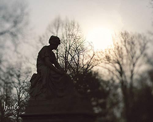 St. Louis Cemetery Angel Statue Photograph