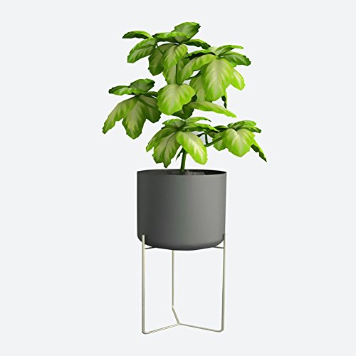 CSQ Indoor Plant Stand, Creative Iron Art Flower Pot Frame Large Floor Place Living Room Bedroom Study Office Waterproof Antirust (Color : Black) by Flowers and friends (Image #5)