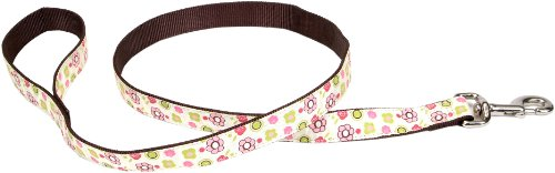 "Pet Attire Ribbon Nylon Leash, 5/8"" x 6'"