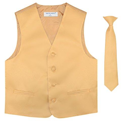 ecktie Solid Gold Color Neck Tie Set Size 2 ()
