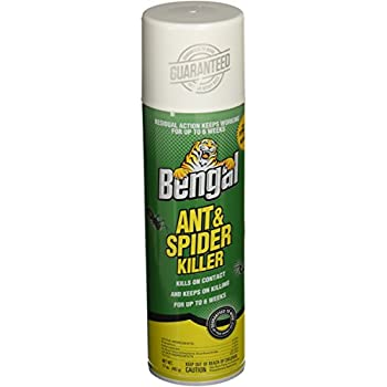 Amazon Com Bengal Chemical Ant And Spider Killer 17 Oz