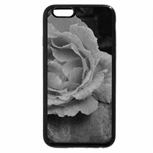 iPhone 6S Plus Case, iPhone 6 Plus Case (Black & White) - Apricot Rose
