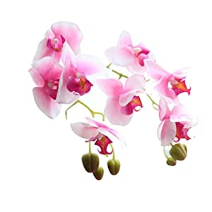 Clearance!! Phalaenopsis Butterfly Orchid Decor Wedding Colorful Artificial Fake Raw Silk Flower 119
