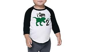 Two Birthday Dinosaur Shirt for Boys Second Birthday Dinosaur Outfit