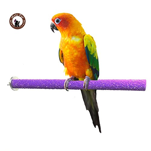 Bird Safety Perch - Mrli Pet Bird Safety Perch Rough-surfaced Nature Wood Stand Branch for Parrot Macaw African Greys Budgies Cockatoo Parakeet Cockatiel Conure Lovebirds Helps Keep Nails and Beaks Colors Vary (M)