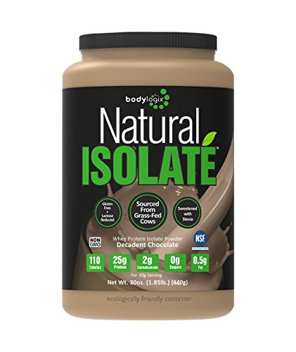 Chocolate Whey Protein Shake - 1