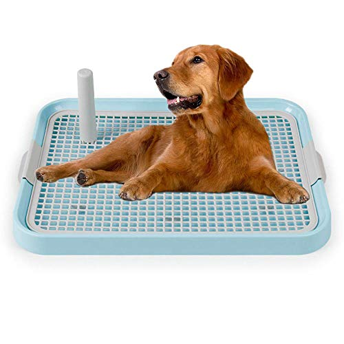 Womdee Pet Training Toilet, Puppy Training Pad Holder Non-Slip Indoor Mesh Potty Toilet for Puppies, Small Dogs & Cats, Keep Paws Dry and Protect Floors