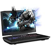 "PROSTAR Clevo P870KM1-G 17.3"" 3K QHD 120Hz 5MS Matte Display G-sync Gaming Laptop, Intel Core i7-7700K, 8GB DDR4, Dual GTX 1080, 1TB HDD, Windows 10 Home, Wi-Fi+Bluetooth, 1-Year Warranty"