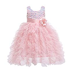 Children's Sleeveless Flower Sequin Princess Net Dress