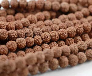 (6mm Natural Rudraksha Bodhi Seed Mala Meditation 108 Beads Red Brown Round 23