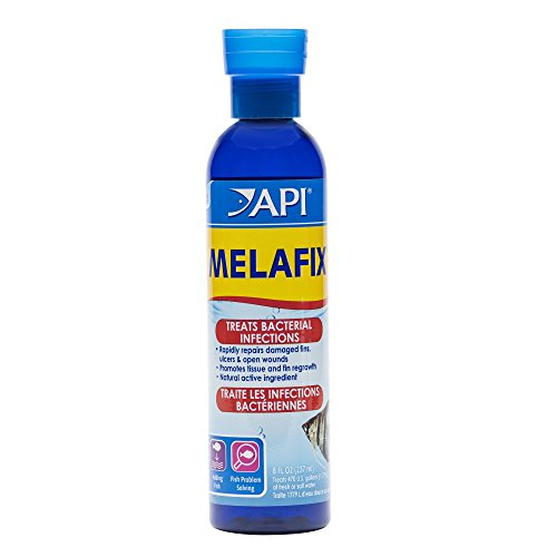 (API MELAFIX Freshwater Fish Bacterial Infection Remedy 8-Ounce Bottle)