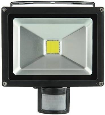 amzdeal® Foco proyector 20W blanco frío- Foco exterior, Lámpara ...