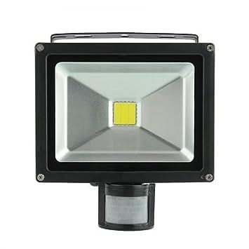 amzdeal® Foco proyector 20W blanco frío- Foco exterior, Lámpara led, Focos led, Luz led, Bombillas LED, Foco orientable de exterior LED, Proyector de ...