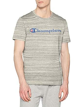 Champion Men's Crewneck T-Shirt-American Classics, Grey (Snnm), Large (211268-EM013)