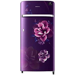 Samsung 198 L 4 Star Inverter Direct-Cool Single Door Refrigerator (RR21T2G2XCR/HL, Camellia Purple)