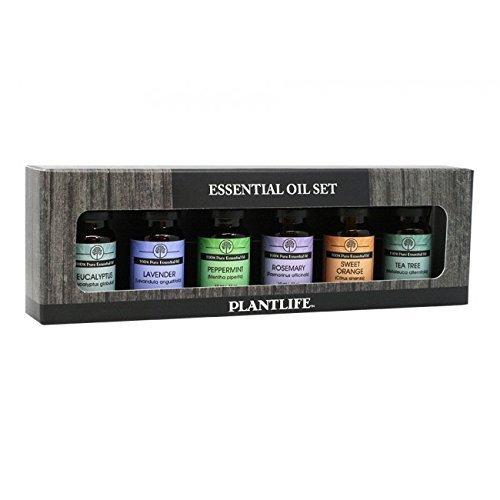 (100% Pure Essential Oil Basic Sampler Set 6/10 ml (Lavender, Tea Tree, Peppermint, Eucalyptus, Rosemary and Sweet Orange) by Plantlife)