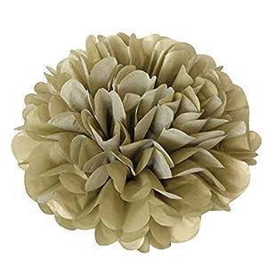 Gotian 10Pcs Tissue Paper Pompoms Pom Flower Balls Fluffy Wedding Party DIY Decoration 41