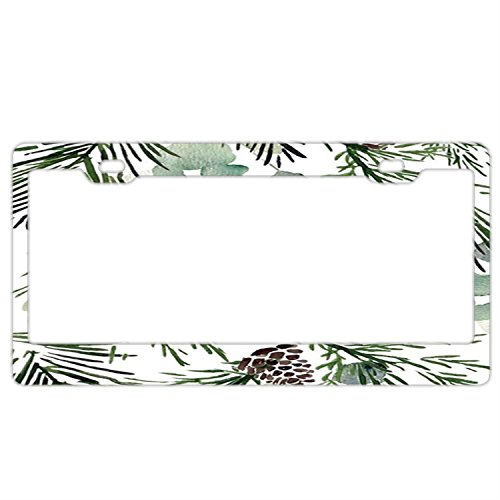 FunnyLpopoiamef Watercolor Pinecones And Greenery License Plate Frame For Women, Custom License Plate Frames,license Plate Holder,cute Decorative License Plate Frame