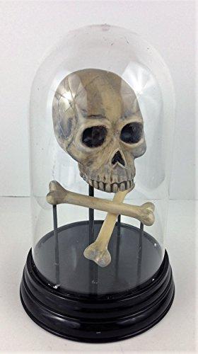 Halloween Mad Scientist Laboratory Skull & Bones Cloche