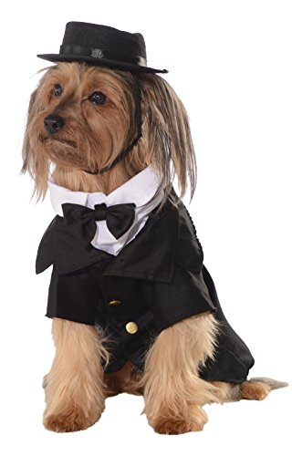 Rubies Costume Halloween Classics Collection Pet Costume, 2X-Large, Dapper (Dapper Halloween Costumes)