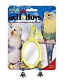 JW Pet Company Activitoy Fancy Mirror Bird Toy, Small, Colors Vary