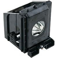 Samsung HLR4266WX/XAA 120 Watt TV Lamp Replacement