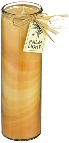 Palm Light 4041678002138 Nuance Palm Wax Candle, Candle, Height: 20 cm, Burn time 100 Hours, Orange