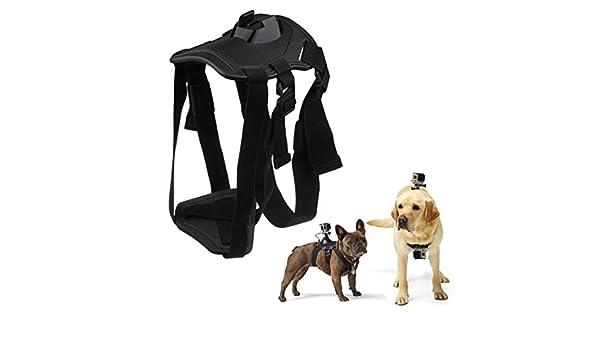 A-szcxtop mascota perro arnés cinturón de correa de pecho espalda ...